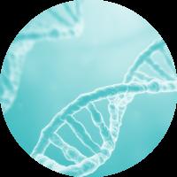 Ronds_Biotech